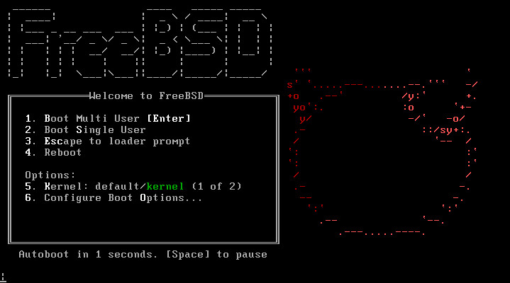 FreeBSD 11.0 installer splash screen